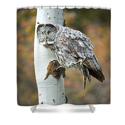 Shower Curtain featuring the photograph Fall Phantom by Aaron Whittemore