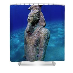 Shower Curtain featuring the photograph Pharao by Rico Besserdich