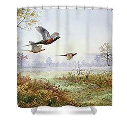Pheasants In Flight  Shower Curtain by Carl Donner