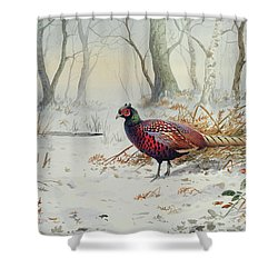 Pheasants In Snow Shower Curtain by Carl Donner