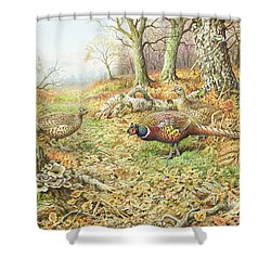 Pheasants With Blue Tits Shower Curtain by Carl Donner