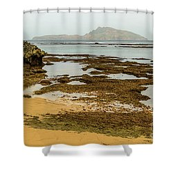 Shower Curtain featuring the photograph Phillip Island 01 by Werner Padarin
