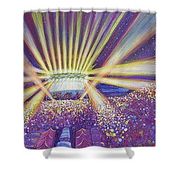Shower Curtain featuring the painting Phish At Dicks 2016 by David Sockrider