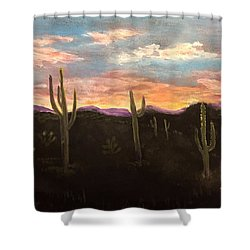 Phoenix Az Sunset Shower Curtain