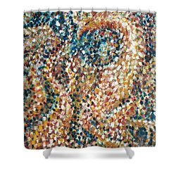 Phoenix Rising Shower Curtain by Jim Rehlin