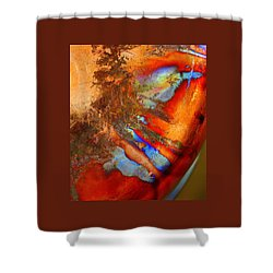 Phoenix Rising Shower Curtain