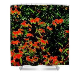 Phosphorescent Daisies Shower Curtain
