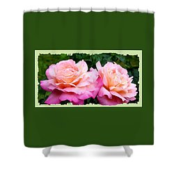 Shower Curtain featuring the photograph Photogenic Peace Roses by Will Borden