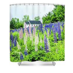 Shower Curtain featuring the photograph Photographers Dream Or Allergy Nightmare by Greg Fortier