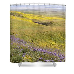 Shower Curtain featuring the photograph Photographing Carrizo by Marc Crumpler