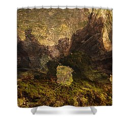 Photography Background Fantasy Woodland Fairy Faery Scenic Shower Curtain