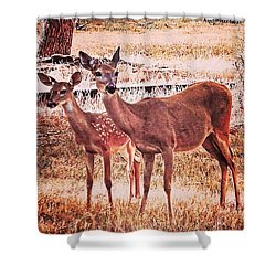 Photoshopping My Two Favorite #deer Shower Curtain