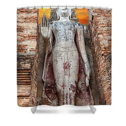 Shower Curtain featuring the photograph Phra Attharot Buddha by Adrian Evans