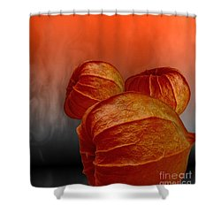 Physalis Shower Curtain