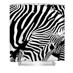Shower Curtain featuring the photograph Piano by Edgar Laureano