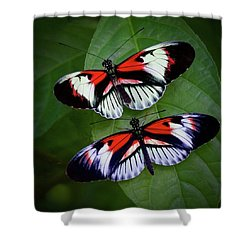 Piano Key Butterfly's Shower Curtain