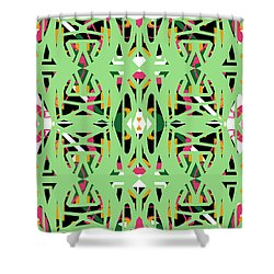 Pic17_120915 Shower Curtain