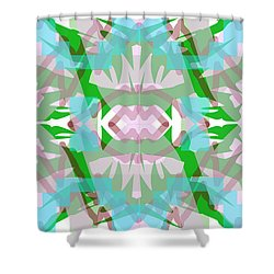Pic3_coll2_14022018 Shower Curtain