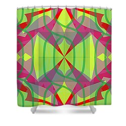Pic8_coll1_11122017 Shower Curtain
