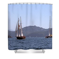 Picante And Patricia Belle Shower Curtain