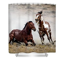Picasso - Wild Stallion Battle Shower Curtain by Nadja Rider