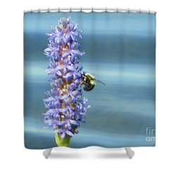 Pickerelweed Bumble Bee Shower Curtain