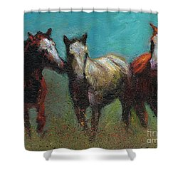 Picking On The New Guy Shower Curtain by Frances Marino