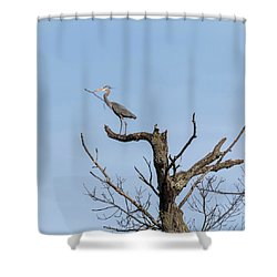 Shower Curtain featuring the photograph Picking Sticks by Thomas Young