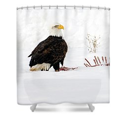 Picking The Bones Shower Curtain