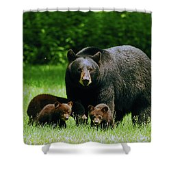 Picnic Crashers Shower Curtain