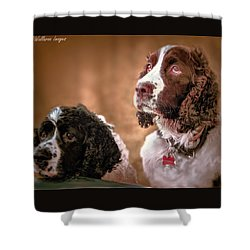 Shower Curtain featuring the photograph Picnic In The Park by Wallaroo Images