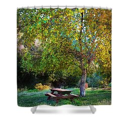 Shower Curtain featuring the photograph Picnic Table by Timothy Bulone