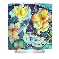 Pictures At An Exhibition Shower Curtain
