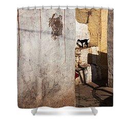 Picturesque Shower Curtain