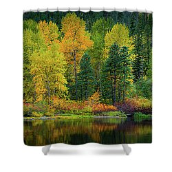 Shower Curtain featuring the photograph Picturesque Tumwater Canyon by Dan Mihai