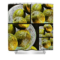 Pieces Of Lime Collage Shower Curtain