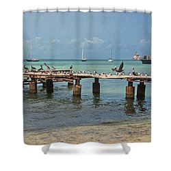 Pier For Birds Shower Curtain