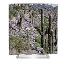 Shower Curtain featuring the photograph Piestewa Peak II by Greg Graham