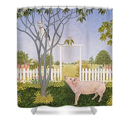 Pig And Cat Shower Curtain by Ditz