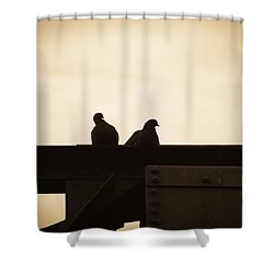 Pigeon And Steel Shower Curtain by Bob Orsillo