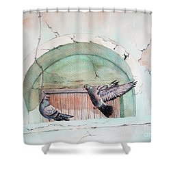 Pigeon Perch Shower Curtain