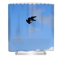 Pigeons Shadow Shower Curtain