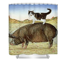 Piggyback-riding At Breteche Creek Shower Curtain by Ditz