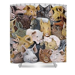 Pigs Galore Shower Curtain by Pat Scott