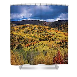 Pikes Peak Autumn Shower Curtain