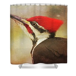 Shower Curtain featuring the photograph Pileated Woodpecker With Snowfall by Heidi Hermes