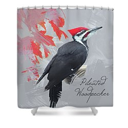 Shower Curtain featuring the photograph Pileated Woodpecker Watercolor Photo by Heidi Hermes