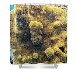 Pillar Coral Shower Curtain
