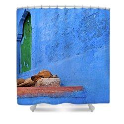 Pillow Shower Curtain by Marji Lang
