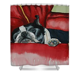 Pillow Pup Shower Curtain